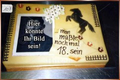 Geburtstagstorten Nr. 107